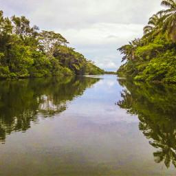 riodecontas itacare manguezal mangroveforest mataatlântica
