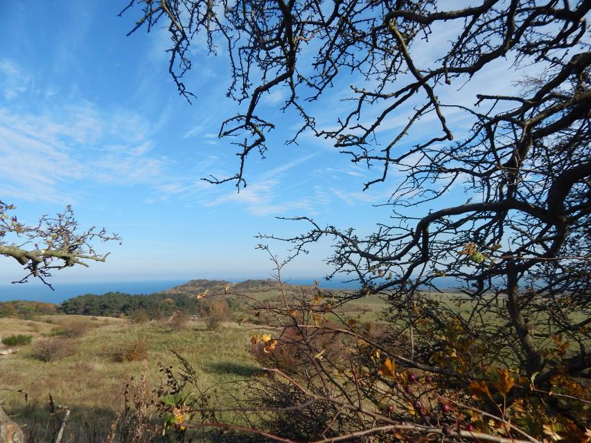 #photography #nature #hiddensee #landscape #autum  #travel