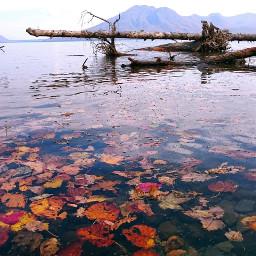 japan hokkaido lake autumn colorful