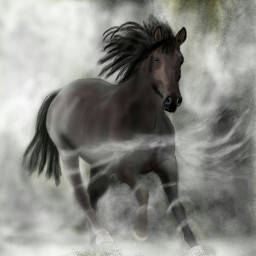 wdpfog drawing petsandanimals horse
