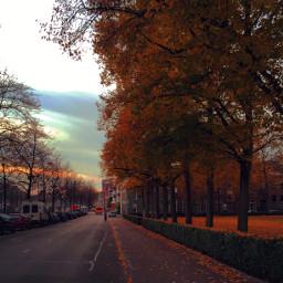 wppfallcolors fall autumn interesting photography