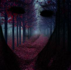 freetoedit surrealism illusion art interesting