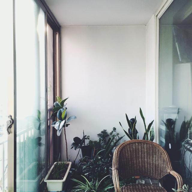 #myhouse #interior #balcony