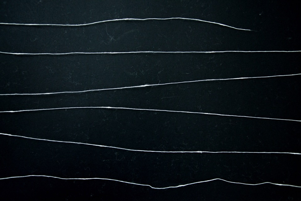 #freetoedit #lines #black&white #texture