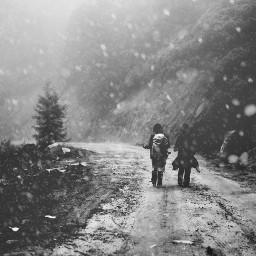 winter dpcwinter snowydays snowydaysmask cold freetoedit