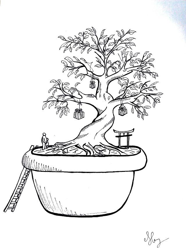 À Noël, le bonsaï peu remplacer le sapin !