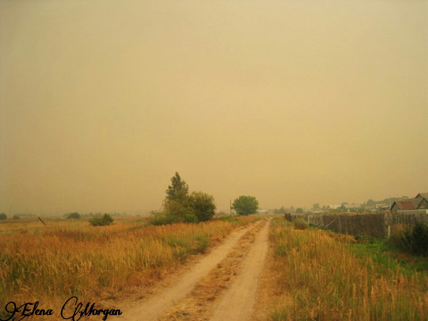 #wildfire  #nature  #photography  #road   #retro  #Russia  #summer  #field