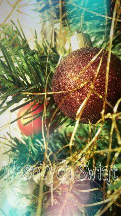 christmas photography christmastree twinkle