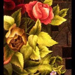 flower colorful art