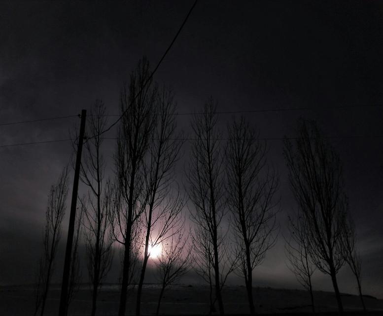 #freetoedit #nature #photography  #sunset #twilight #blackandwhite  #nofilter