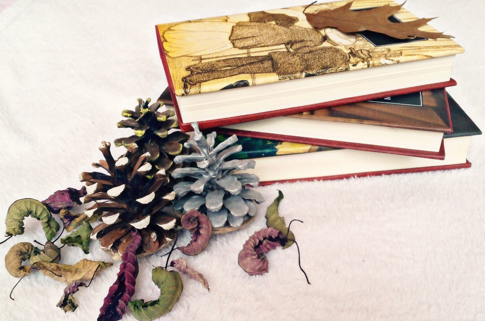 #books #love #colorful #leaves #photography   #flower #emotions   #winter   #creative   #silver  #white #mysterious   #myinspiration