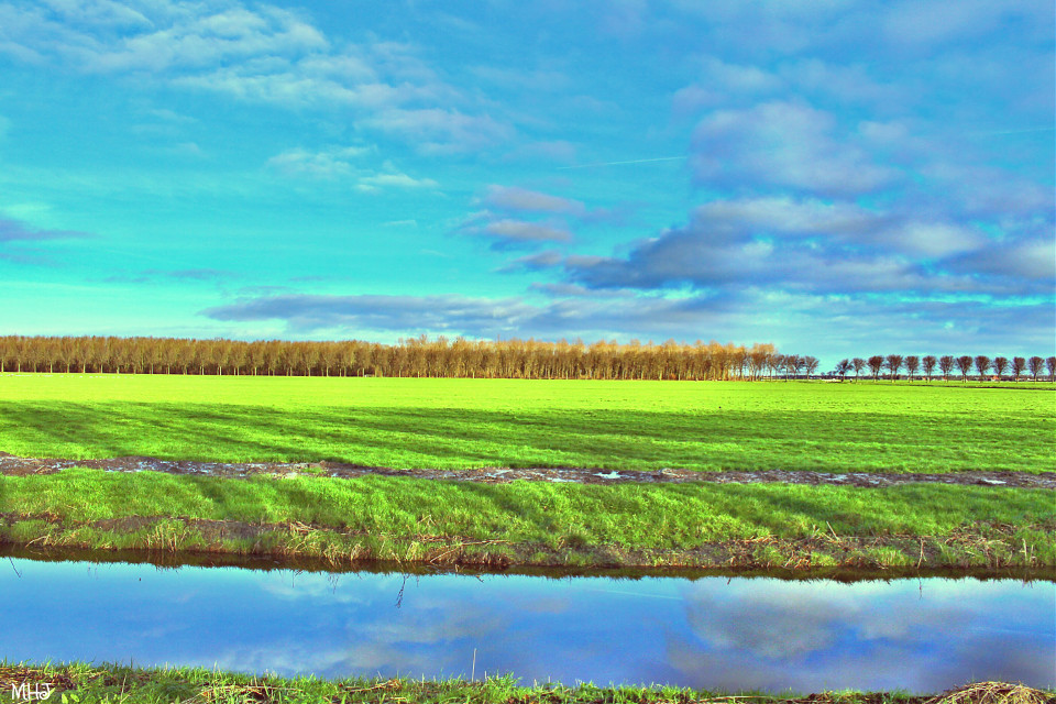 EOS 700D   #photography #hdr #vintageeffect #colorful #nature