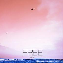 freetoedit