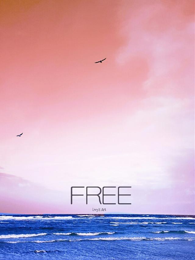 Love will set you free... #sea #seagulls #sweden #waves #sealandscape #love