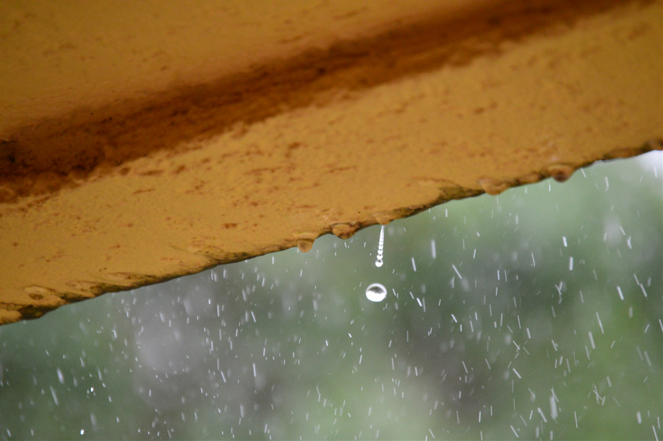 Caught a raindrop as it was falling!  #rain #photography