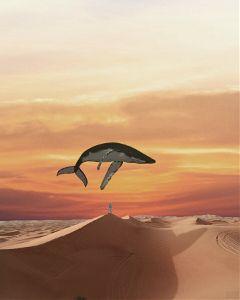 freetoedit nature fish jump while