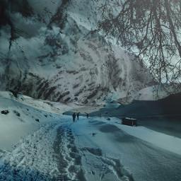 blue mountains snow adventure tree