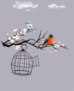 birds nature freetoedit