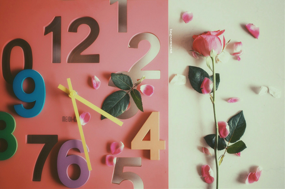 Time heals  #clock #photography #emotions #flower