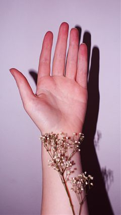 hands hand flower art fingers freetoedit