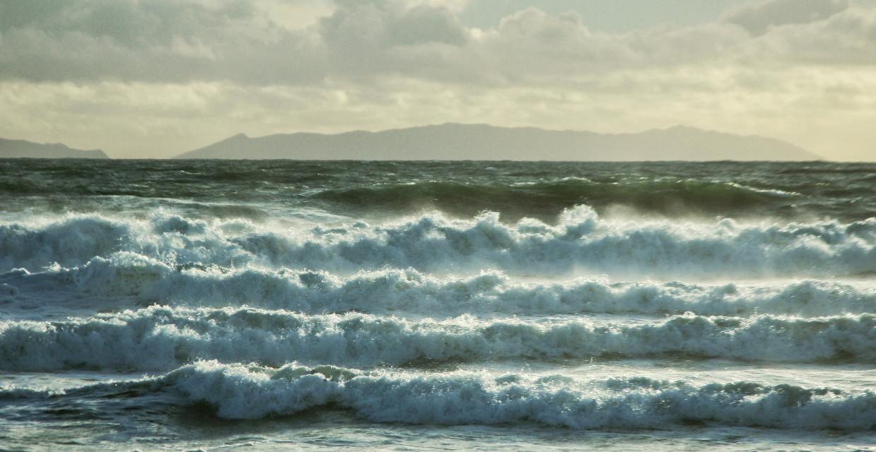 #beach #windy #ocean #surf #waves #water #california #softfocus #art #photography #winter #nature