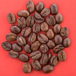 coffee coffeebeans studiophotography macro macrophotography