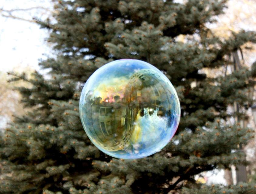 #bubble #yerevan #armenia #building #tree #reflection #upsidedown #earthday #nofilter