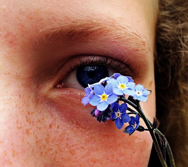Don't forget me flower #macro #macrophotography #eyes #blue #flower #art #photography #eye #interesting #nature #summer #travel