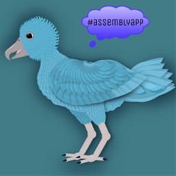 birds vectorart assemblyapp digitalart art