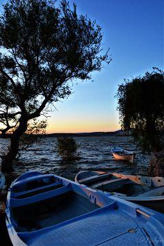 view lake tree silhouette boats